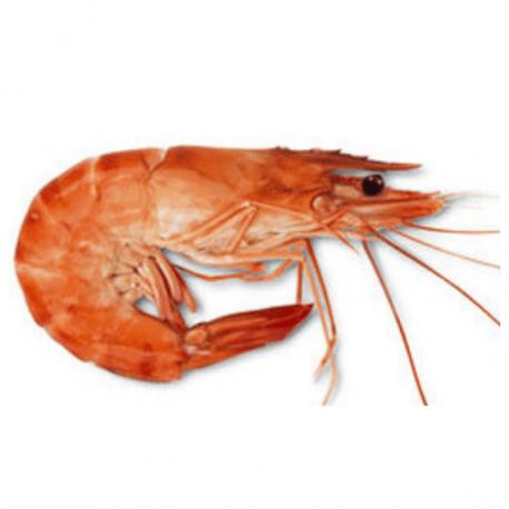 Crevettes de Madagascar cuites 40/6