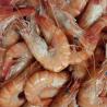 Crevettes tropicales cuites
