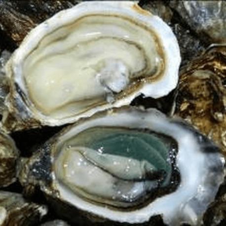 Huîtres Marennes Spéciale de Claires N°3